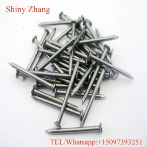 Building Use High Quality Common Nail pictures & photos