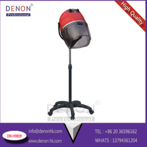 New Design Beauty Hair Drying for Salon Equipment (DN. H9809) pictures & photos