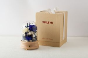 Ivenran Bluetooth Speaker Music Box Flower for Gift and Decoration pictures & photos