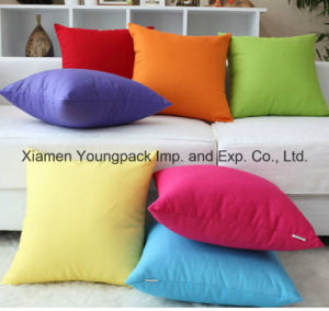 Cheap 45X45cm Promotional Custom Design Sofa Square Throw Pillow Case pictures & photos