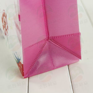 3D Auto-Forming Laminated Recycable Non Woven Bag (My-010) pictures & photos