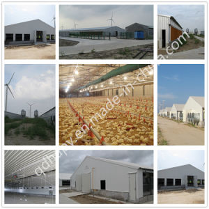 Economical Steel Frame House for Warehouse /Workshop /Commercial Building pictures & photos