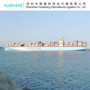 Export to Felxstowe From Shenzhen by Sea Shipping Service pictures & photos