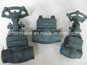 Forged Steel Piston Check Valves pictures & photos