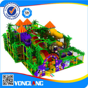 2016 High Quality Cheap Large Amusement Park Indoor Playground, Yl-Tqb038 pictures & photos