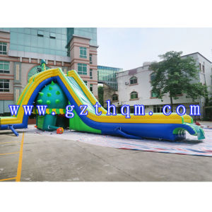 Design Funny Adult Size Giant Inflatable Water Slide with Pool/Outdoor Green Slide pictures & photos