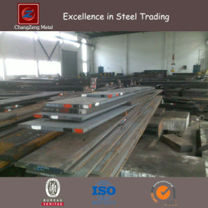 Wall Thick Steel Plate for Special Purpose (CZ-S69) pictures & photos