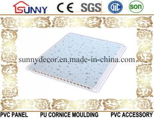 New Design PVC Panel-PVC-Ceiling-PVC Wall Panel-PVC Printing Panel pictures & photos