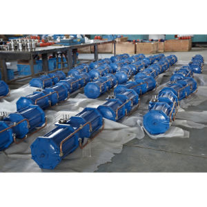 Aw Series Pneumatic Actuator From China pictures & photos