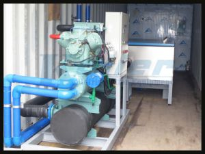 40 Feet Containerized Ice Block Machine with 5tons/Day pictures & photos