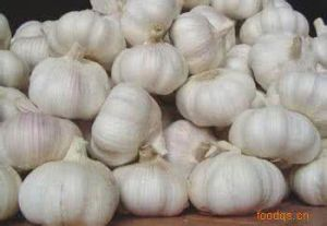 2017 New Season Fresh Garlic pictures & photos