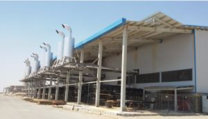 1MW - 50MW Diesel Gas Heavy Fuel Power Plant Project Construction pictures & photos