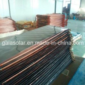 Renewabl Energy Flat Plate Solar Collectors 200L pictures & photos