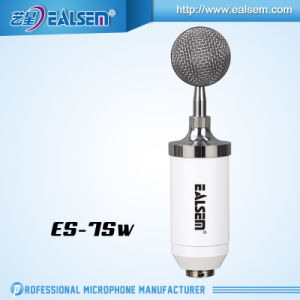 Professional Total Set for Recording and Studio Condender Microphone