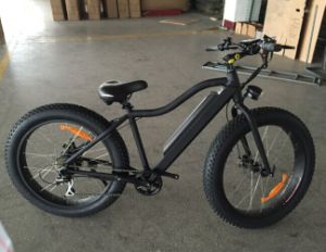 48V750W Fat Electric Bike 26inch pictures & photos