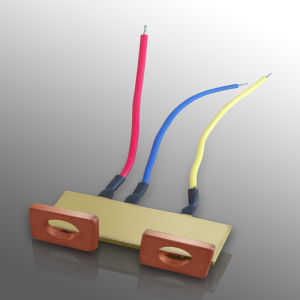 Ce Approved Meter Current Shunt Hook up Wire Shunt (MS027) pictures & photos
