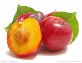 Reliable Quality Organic Natural Dark Plum Fruit Extract pictures & photos