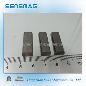 Manufacture Customized Permanent AlNiCo Magnet for Motor pictures & photos