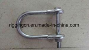 Galvanized JIS Type D Lifting Shackle pictures & photos