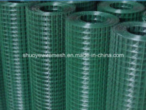 Welded Wire Mesh for Garden Fence pictures & photos