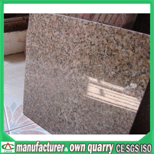 Professianl Granite Factory Cheap Granite for Tile/Stair/Slab pictures & photos