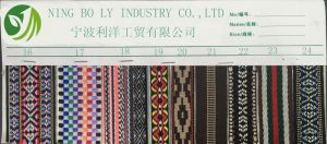 Polyester Jacquard Woven Tape 16-24 pictures & photos