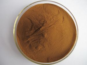 100% Natural Food Additives Cuminum Cyminum Extract pictures & photos