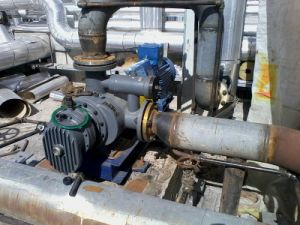 Bitument Twin Screw Pump pictures & photos