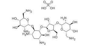 Neomycin Sulfate CAS No. 1405-10-3 pictures & photos