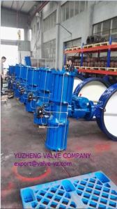 Ggg40 Wafer-Type Butterfly Valve pictures & photos