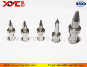 Mould Product Manufacturing Carbide Polit Driller Tool pictures & photos