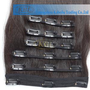 Grade 5A Brazilian Clip-in Hair Extension pictures & photos