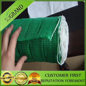 100% Virgin HDPE Factory Economical Shade Net Distributor pictures & photos