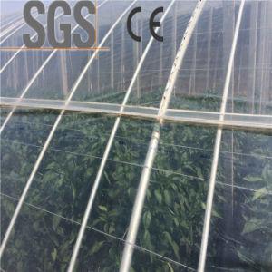 Transparent Agriculture Plastic Mulch Film Agriculture Mulching Film pictures & photos
