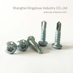 Serration Trox Pan Framing Head Self-Drilling Screw pictures & photos
