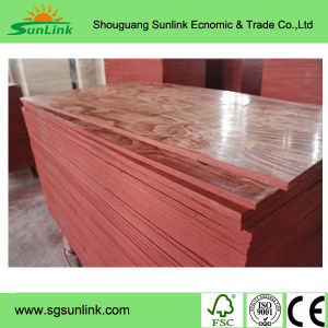 Shuttering Plywood BB/CC Grade Popar Core Mexico 9mm pictures & photos