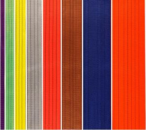 Polyester Webbing Sling Fabric 8: 1 pictures & photos