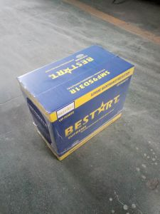 12V 80ah SMF Car Battery 95D31r pictures & photos