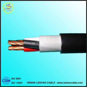 PVC Insulated Solid Control Cable (KVV KVVR KVVP KVVRP) pictures & photos
