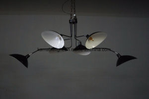 Modern Black Aluminum Pendant Hanging Lights (KA0181) pictures & photos