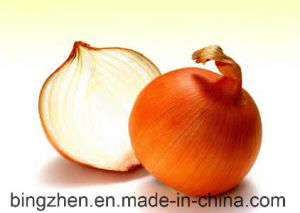 2017 New Crop Fresh Yellow Onion 5.0cm up pictures & photos
