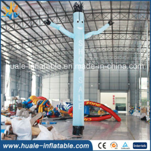 Customized Inflatable Air Dancer Inflatable Sky Dancer for Advertising pictures & photos