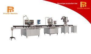 Simple and Effective Liquid Washing, Filling and Sealing Production Line pictures & photos
