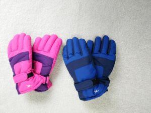 Kids Ski Glove/Kid′s Fingered Glove/Children Ski Glove/Children Winter Glove/Detox Glove/Okotex Glove/Mitten Ski Glove/Mitten Winter Glove pictures & photos