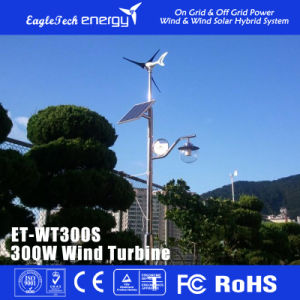 300W Wind Power System Wind Turbine Generator Wind Mill