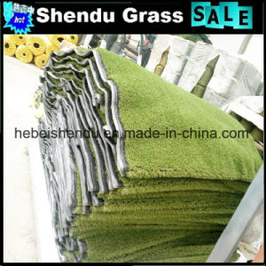 Green Carpet Artificial Grass Turf 20mm From Hebei Factory pictures & photos