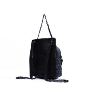 Al8915. Leather Backpack Ladies′ Handbag Designer Handbags Fashion Handbag Leather Handbags Women Bag pictures & photos