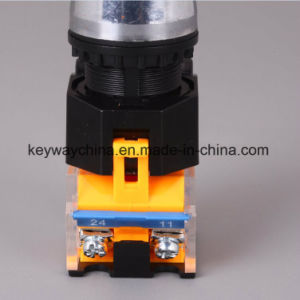 Keyway IP40 Key Type Push Button Switch (LA118M series) pictures & photos