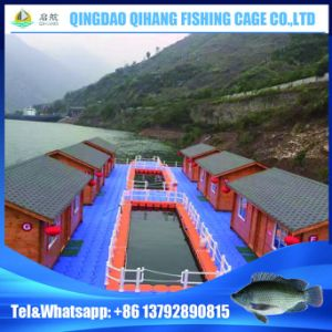 2017 China Plastic Floating Leisure Platform on The Water pictures & photos