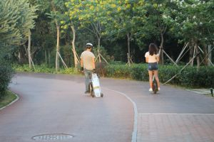 Smart Skateboard Electric pictures & photos